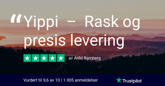 trustpilot review - arild ramberg